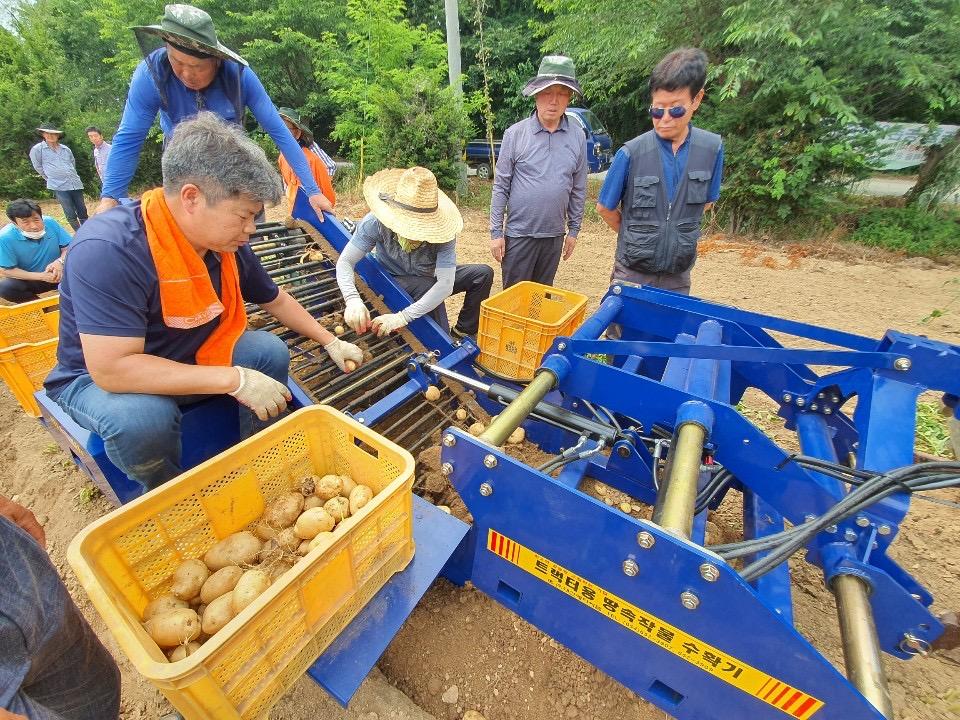 노동력 절감을 위한 고구마 수확기 시연회 개최